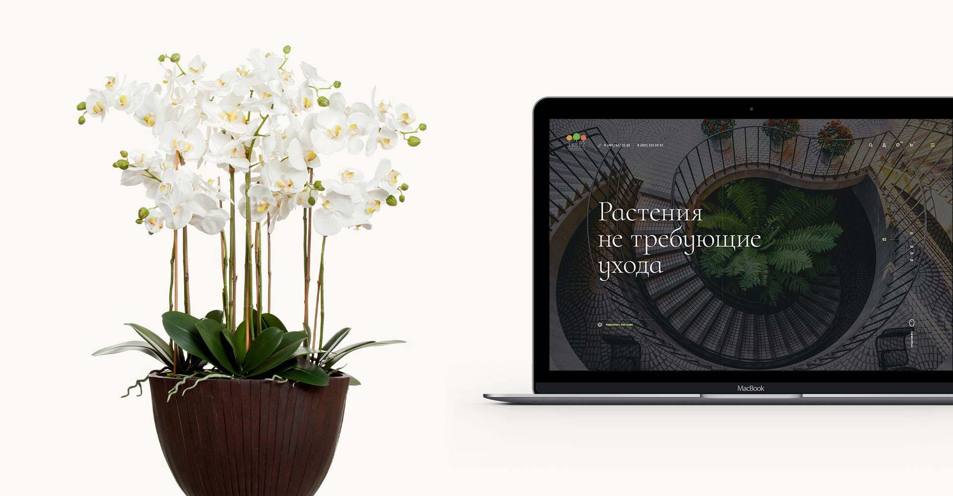 Оптово-розничный интернет-магазин искусственных растений Treez Collection treez.be